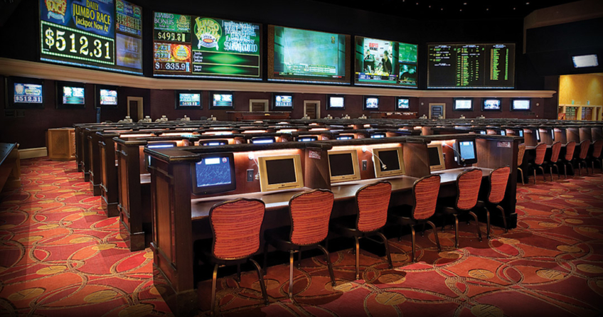 sports betz betting area